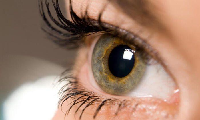 Göz Hastalığı Tespiti Yapan Uygulama Yayınlandı