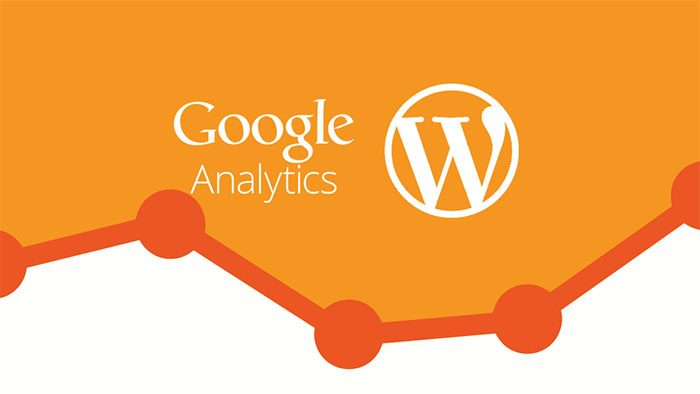 WordPress'e Analytics Kodu Ekleme